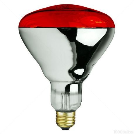 Norman Lamps-250BR40/10 RED